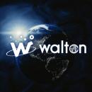 Обзор криптовалюты Waltonchain