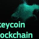 Обзор Tkeycoin