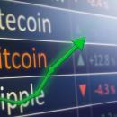 Анализ курса криптовалют за неделю