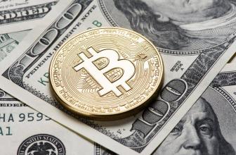 Обзор Bitcoin Cash: что за криптовалюта и какие перспективы у BCH