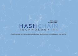 Знакомство с компанией Hashchain
