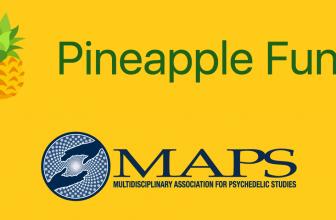 Pineapple Fund написал прощальный пост и сообщил, что все средства переданы на пожертвования