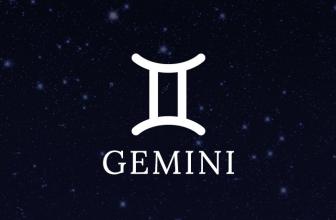 Обзор криптовалютной биржи Gemini – детище братьев Уинклвосс