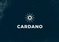Сможет ли Cardano войти в ТОП-3 монет 2019 года?