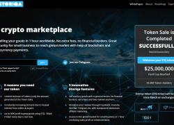 Обзор Storiqa ICO: инновационный маркетплейс на блокчейне