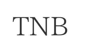 Криптовалюта TNB: суть и перспективы проекта Time New Bank