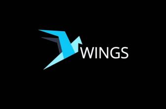 Обзор криптовалюты Wings: особенности технологии и перспективы