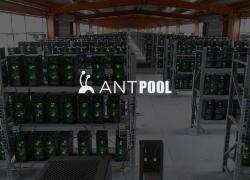 Antpool: обзор пула, настройка ASIC/GPU, выплаты, отзывы