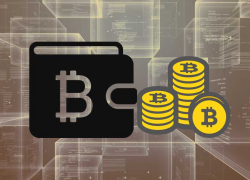 Надежное хранение криптовалют
