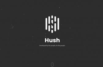 Обзор криптовалюты HUSH: особенности технологии, где хранить и о многом другом