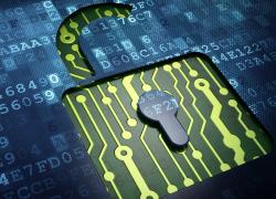 Обзор кошелька для криптовалюты Exodus 2019: установка и настройка