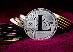 Майнинг Litecoin: обзор, ключевые моменты, пулы для добычи