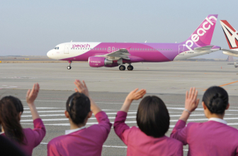 Авиакомпания Peach Aviation будет принимать криптовалюты для оплаты билетов